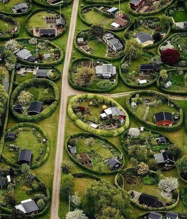 1. Danimarka'da evlerin bir kısmı bu şekilde devasa çitlerle sarılıdır.