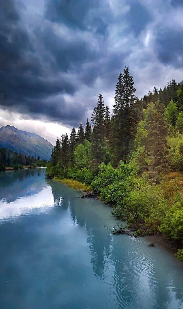 4. Alaska - Anchorage'dan Seward'a giden trenden çekilen fotoğraf 😍