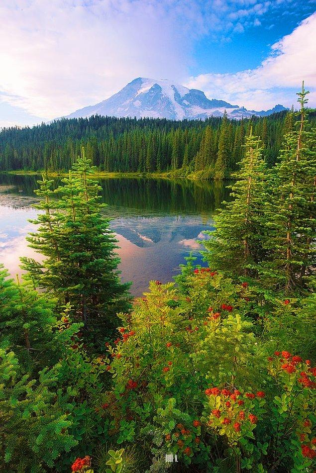 6. Rainier Dağı - Washington: