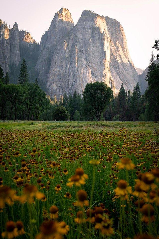 14. Yosemite Ulusal Parkı - Kaliforniya: