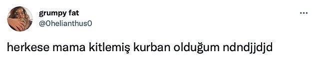 Sosyal medya kullanıcıları olarak birçoğumuz Kadıköy'deki mama isteyen kedinin videosuna denk gelmişizdir.