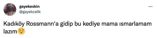 Bir kısmı da kediyi görmek için sabırsızlandığını ve sadece kediyi görmek için Kadıköy'e gitmek istediğini belirtti.
