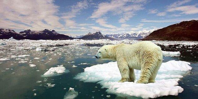 ABD'den 13 bilim insanı, bugüne dek hazırlanan pek çok rapordan faydalanarak küresel ısınmanın etkilerini daha uzun vadede hesaplamayı başardı.