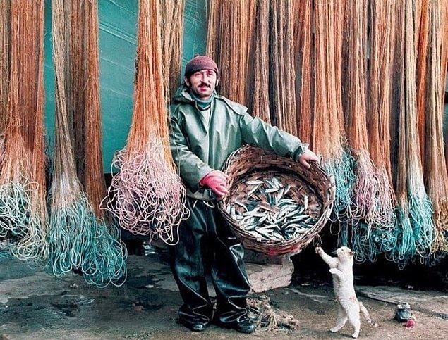 21. Balıkçı ve kedi, İstanbul, 1970.