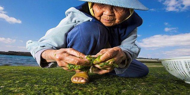 Deniz ürünleri, yosun, soya yağı, meyve ve sebze sofralarından hiç eksik olmuyor.