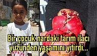 AB Ülkelerinde Yasak Olan Pestisitler Türkiye'de Masum Bir Çocuğun Canını Aldı, Çözüm İçin Neyi Bekliyoruz?