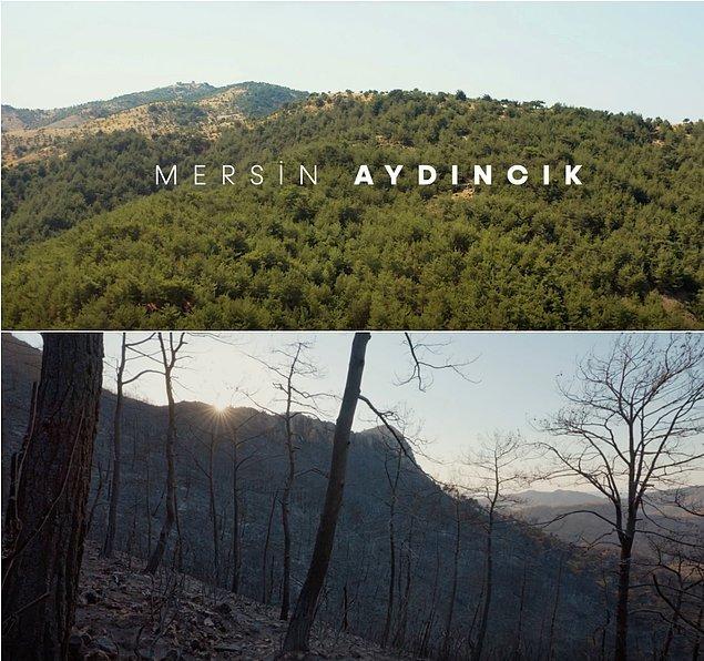 Marmaris, Manavgat, Köyceğiz, Bodrum gibi yerlerde yaşanan yangınlar çok büyük felaketlerdi. Ancak Mersin Aydıncık'ta Manavgat'tan bile çok daha büyük bir yangın vardı.