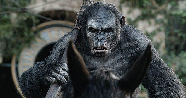 15. Dawn of the Planet of the Apes (2014)