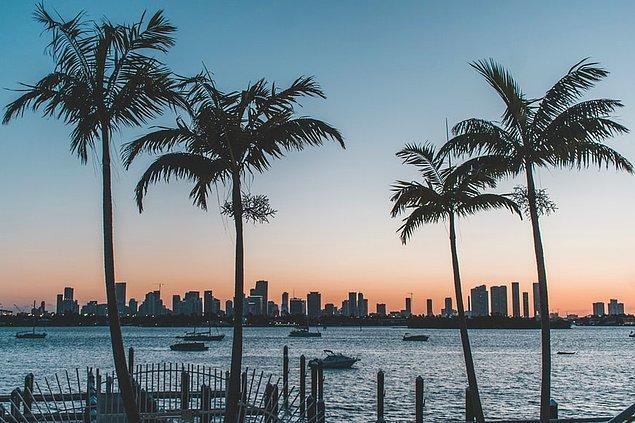 Miami denildiğinde akla ilk gelen şey renkli gece hayatı ve şehrin ünlü kumsalları oluyor. Amerika'nın gözde turizm merkezi olan Miami eğlencenin ve lüksün durak noktası.