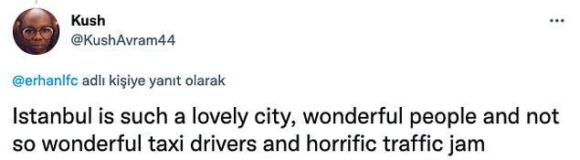 """7. """"İstanbul çok güzel bir şehir, insanları harika ve taksicileri hiç harika değil, trafiği korkunç."""""""