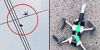 Elektrik Teline Asılı Kalan Güvercini Bıçak Bağlanan Drone ile Kurtaran Güzel İnsanlar
