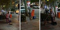 Belediye İşçisine Sırtını Kaşıtmak İçin Dört Dönen Kedinin İçinizi Isıtacak Görüntüleri