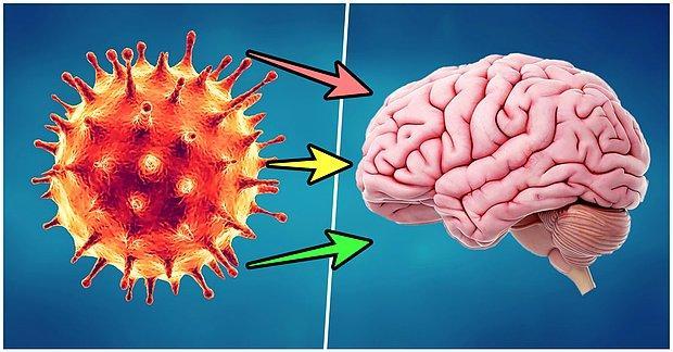 Yapılan Araştırmalar Sonucunda Koronavirüsü Hafif Atlatanların da Beyninde Kalıcı İz Oluştuğu Ortaya Çıktı
