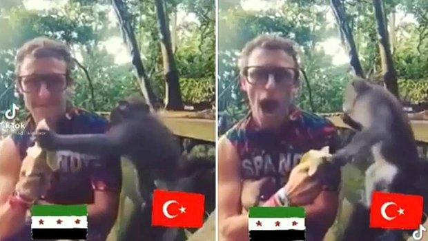 'Muz Çalan Maymun' Videosundaki Maymuna Türkiye Bayrağı Koyan Suriyeli Mültecinin Tepki Çeken Montaj Videosu