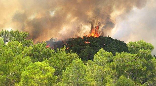 Antalya'da Bir Grup Rus Turist, Kasıtsız Orman Yangını Çıkarma Şüphesiyle Gözaltına Alındı