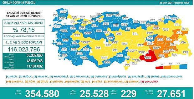 Günün Tablosu: 229 Can Kaybı, 25 Bin 528 Yeni Vaka
